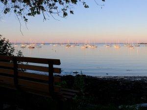 Harbor4.JPG
