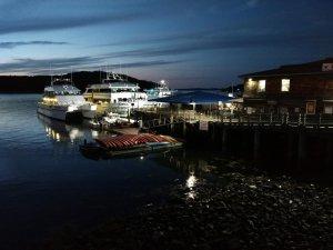 Harbor5.jpg